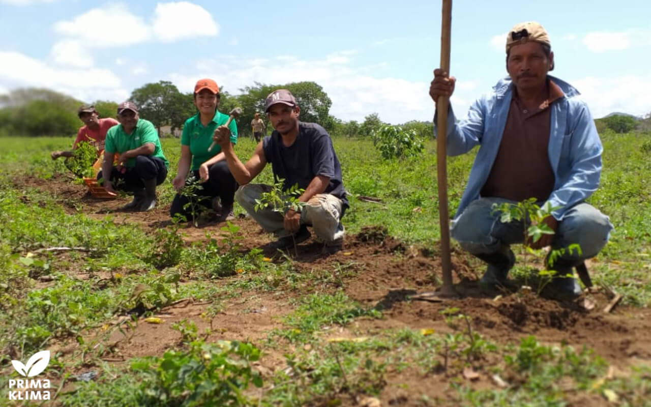 With a donation of 5,000 Euro to PRIMAKLIMA, meteocontrol GmbH supports a smallholder family in Nicaragua in the reforestation of a fallow area.